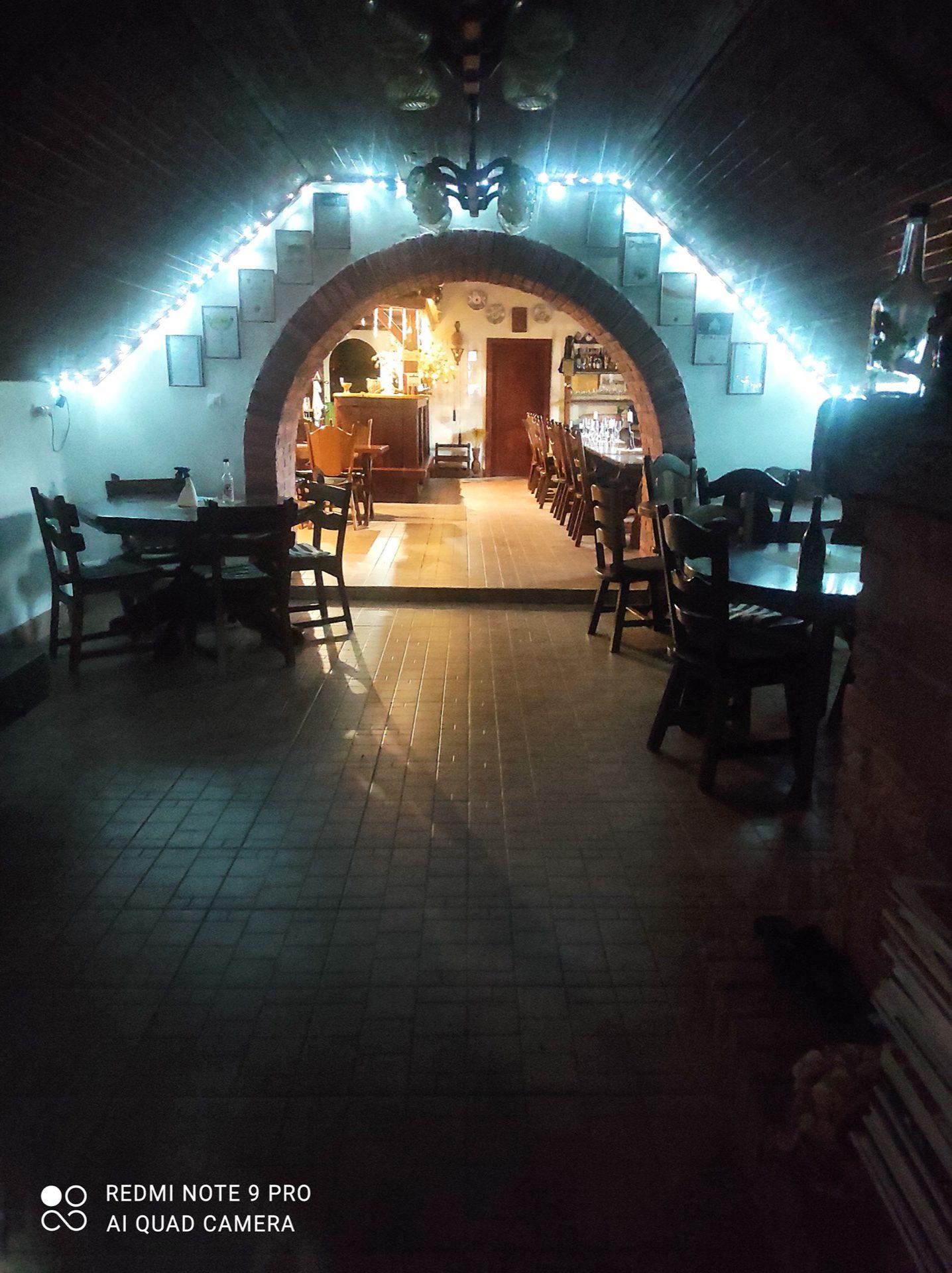 vine-basement