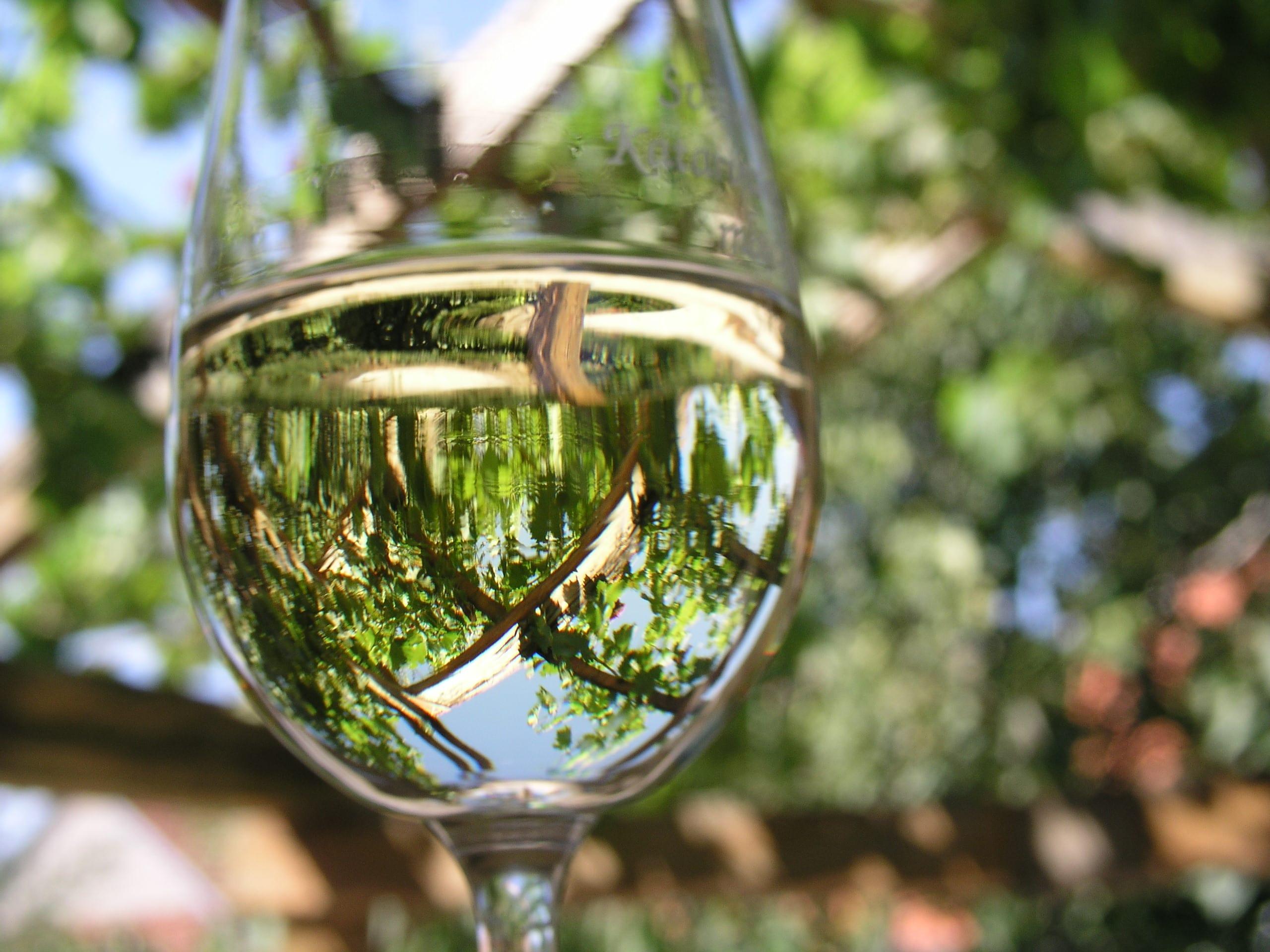 vinarstvo4_Vinarstvo Kopecek-min