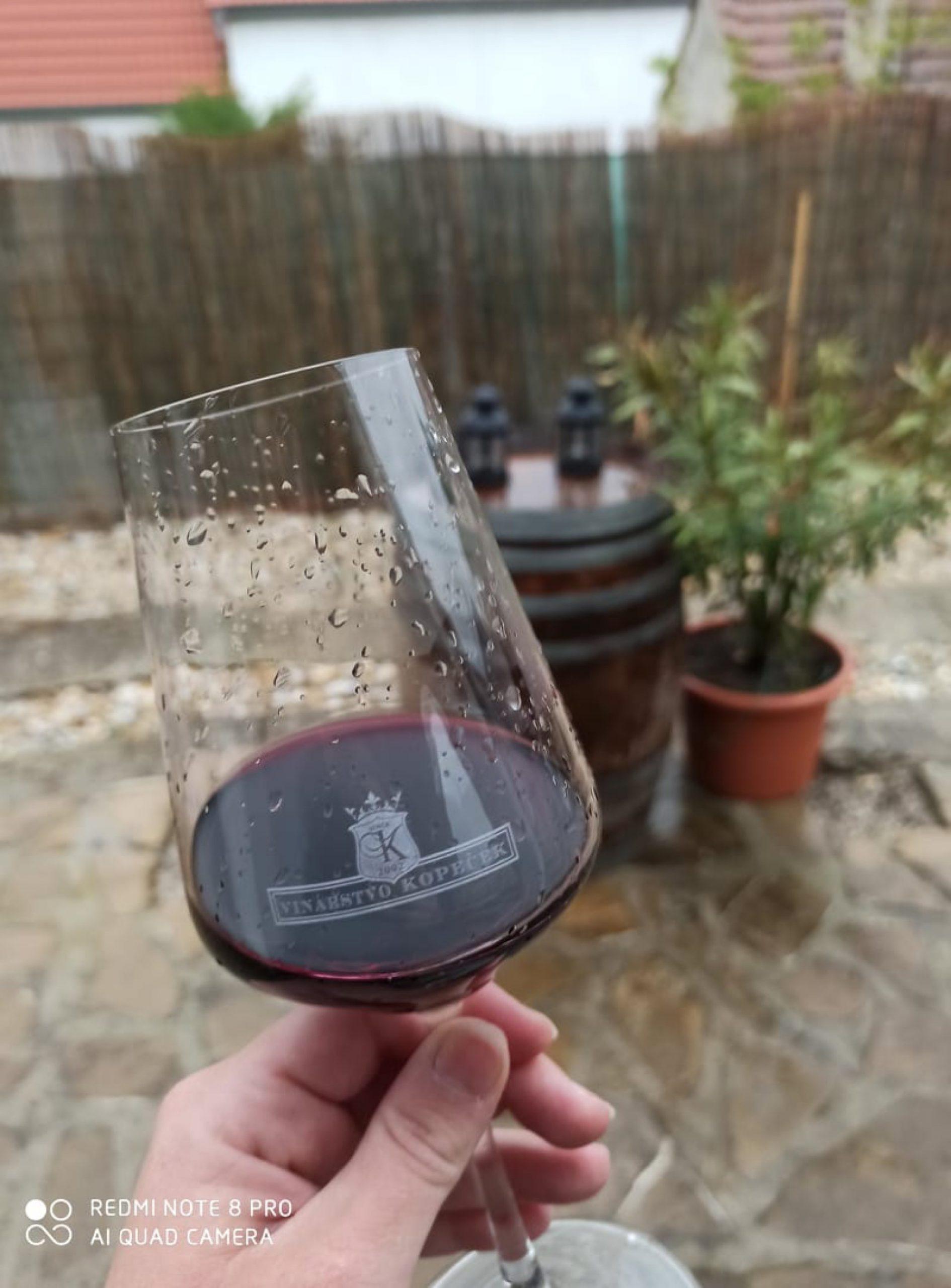 vinarstvo5_Vinarstvo Kopecek